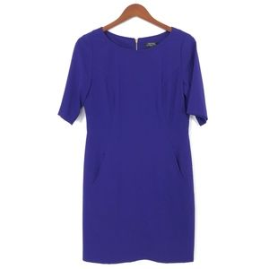 Tahari   Purple Sheath Dress Lined